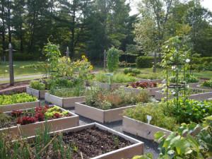 garden image