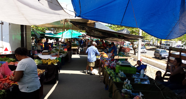 Quepos Costa Rica  City new picture : The Quepos farmers market is a great way to stock up on affordable ...