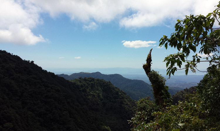 Image of View from Monteverde