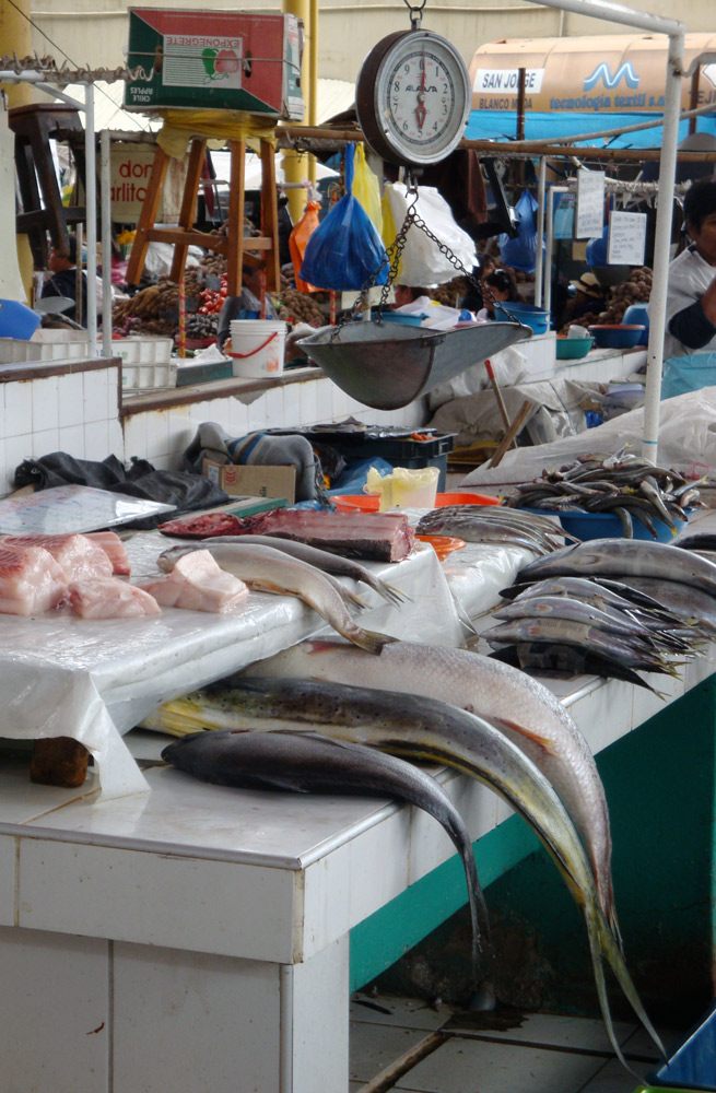 Image Fish at the Mercado San Canmilo in Arequipa Peru