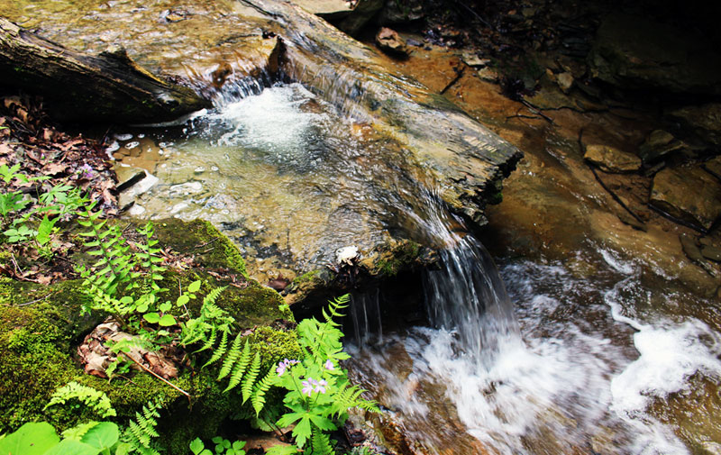 Indiana: Shades State Park and Burgers in Crawfordsville