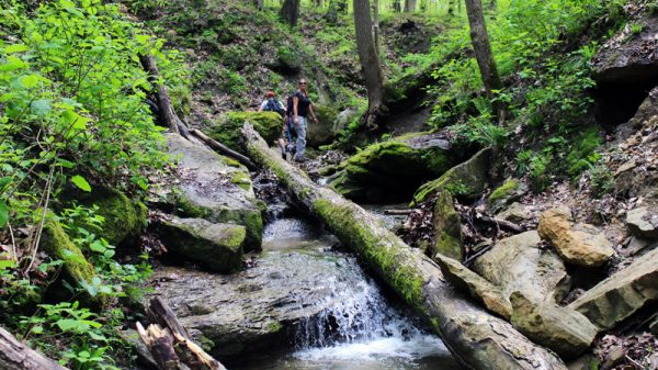 Image of Hiking in Shades State Park